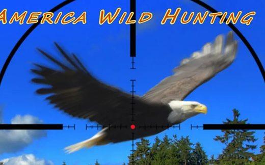 美国野外狩猎/America Wild Hunting